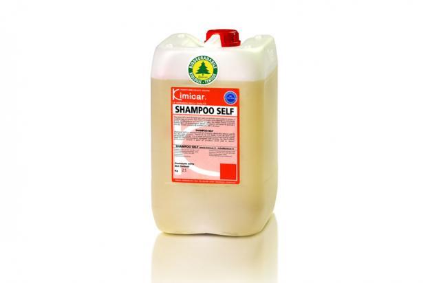 Detergente concentrato polivalente con proprietà autolucidanti ed autoasciuganti